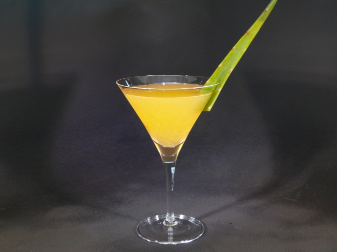 cocktail estivi all'aloe vera 4