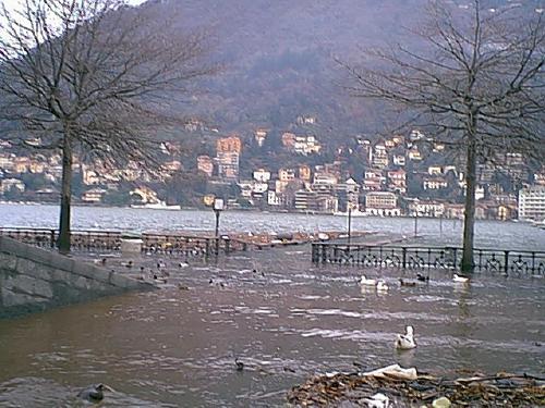 lago in piazza 2