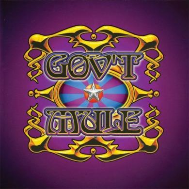 gov't-mule-live