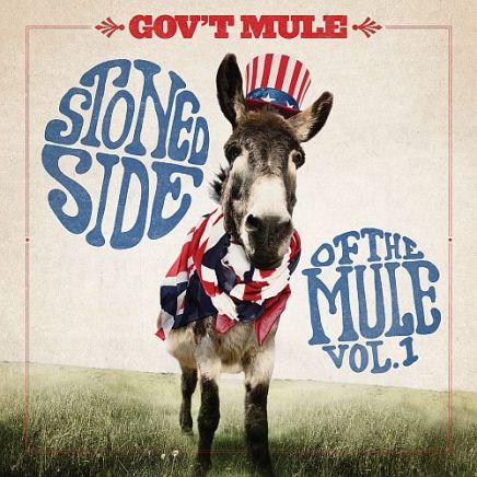 Govt-Mule-stone-side