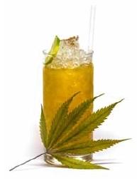 cannabis dry 4
